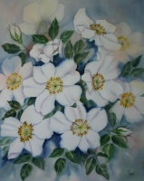 Dog roses by Kieser, Annette