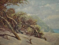 Trees and dunes by Andersen, Nils