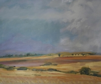 Wheatfields of Riebeeck kasteel by Mann, Robin