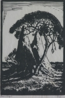 Hendrik pierneef - Mierhope - Suidwes - Afrika by Twenty Artists, Limited Edition portfolio