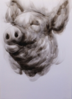 Untitled (Pig) by Victor, Diane