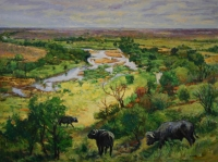 Buffalo in landscape near Letaba by Eloff, Zakkie