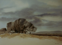 Trees and hill by Rennie, Richard