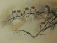Owls by Yudra, Van