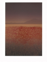 Red field by Hart, Bill