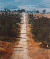 Man on long road, Zimbabwe by Oberholzer, Obie
