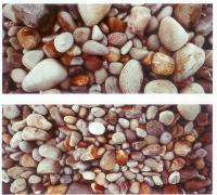 Pebbles by Riordan, John