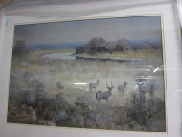 4 white ring kudu in river scene by Wiles, Paul