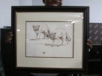 2 things/ wild dogs by Eloff, Zakkie